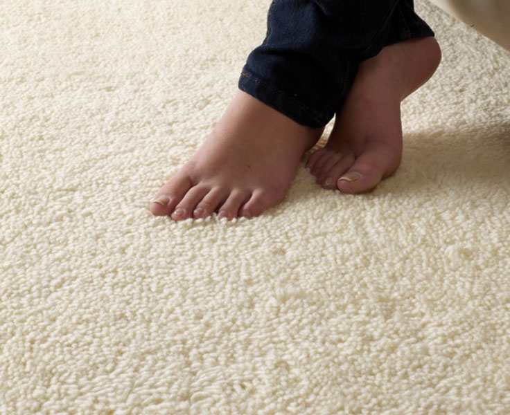 Carpet, Residential & Commercial Flooring in Auckland